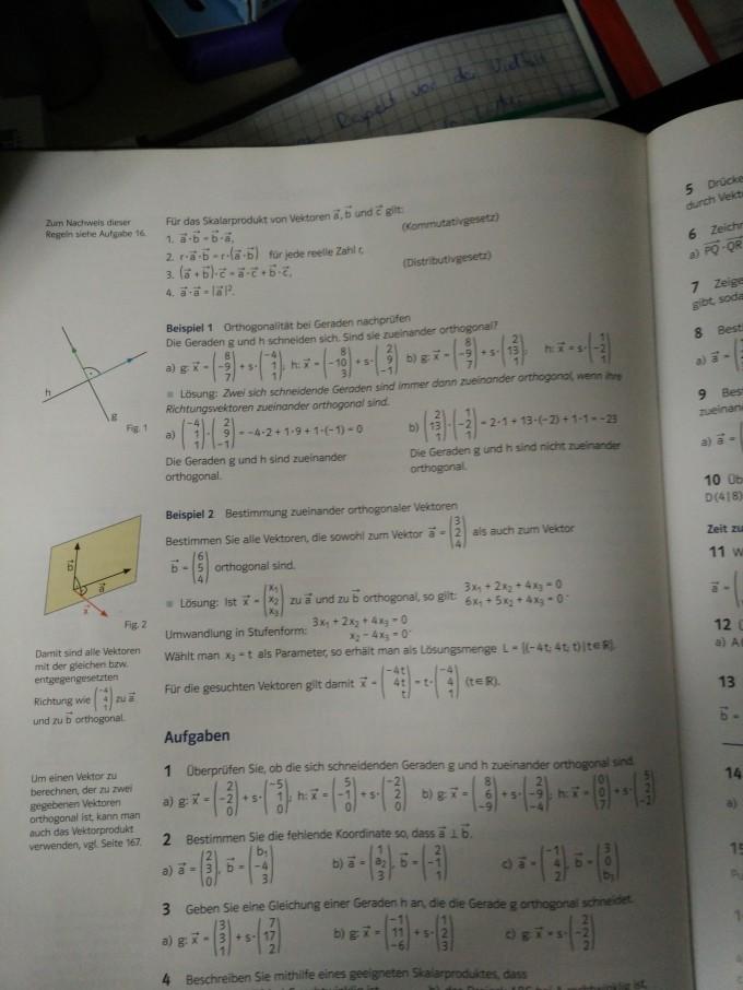 Geben Sie eine Gleichung einer Geraden h an, die die Gerade g ...