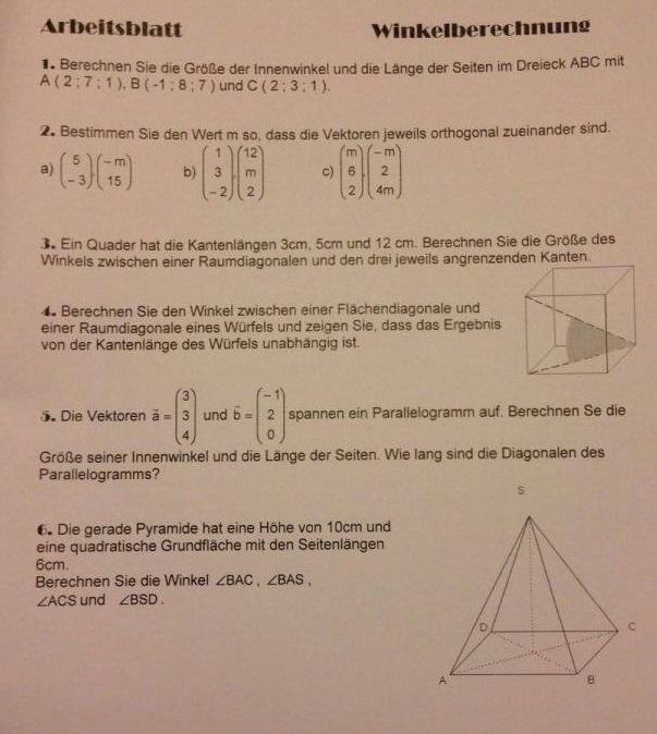 Wie rechntet man diese Aufgaben zur Winkelberechnung und Vektoren ...